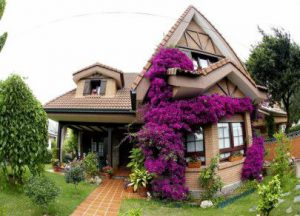 arquitectos perez eguiagaray